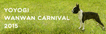 YOYOGI wanwan carnival 2015